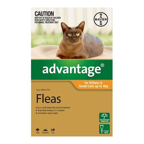 Bayer Advantage For Kittens & Small Cats Up To 4Kg (Orange) - 1s | Choice Vet Pharmacy
