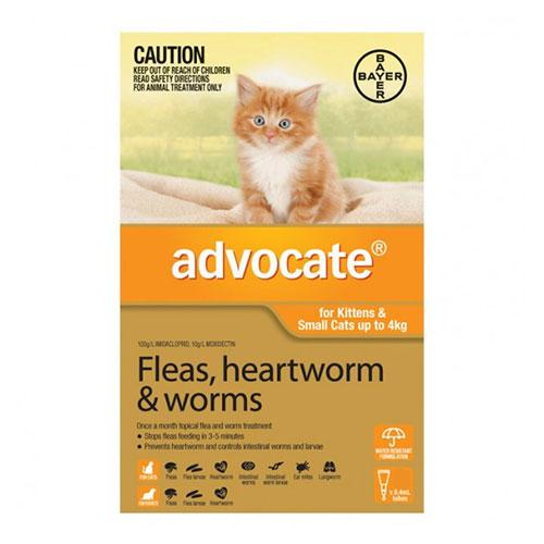 Bayer Advocate For Cats Over 4Kg (Purple) - 6pk | Choice Vet Pharmacy
