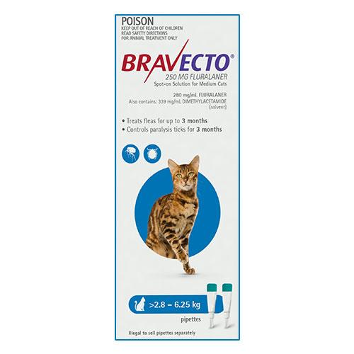 MSD Animal Healh Bravecto Spot On For Medium Cats (2.8 - 6.25 kg) Blue | Choice Vet Pharmacy