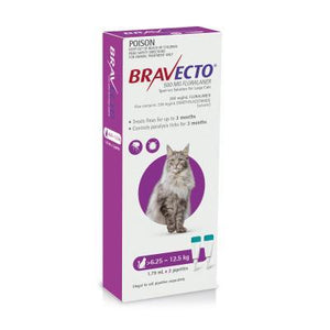 MSD Animal Healh Bravecto Spot On For Large Cats (6.25 - 12.5 kg) Purple | Choice Vet Pharmacy