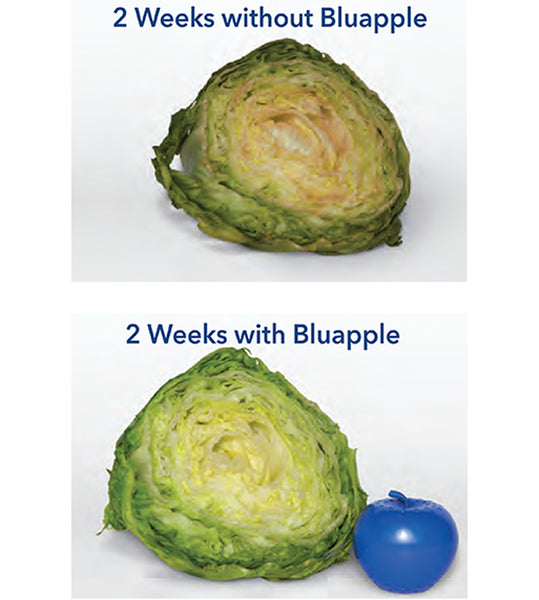 Bluapple® 2-Pack (Eco-Friendly)