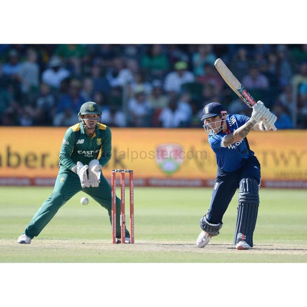 Alex Hales bats during the 2nd Momentum ODI between South Africa and England at St George's Park in Port Elizabeth | TotalPoster