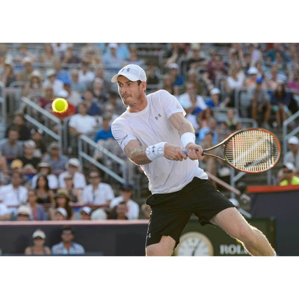 Andy Murray - Poster