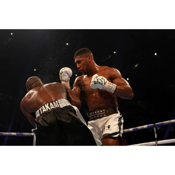 Anthony Joshua and Carlos Takam during their IBF, WBA & IBO match TotalPoster