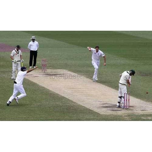 Chris Tremlett takes the last wicket to give victory to England during day five of the Fifth Ashes Test match between Australia and England at the Sydney Cricket Ground | TotalPoster