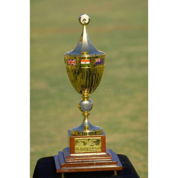 Cricket World Cup Trophy | Cricket Posters | TotalPoster