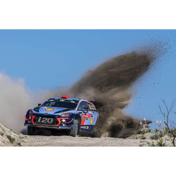 Daniel Sordo | World Rally posters | TotalPoster
