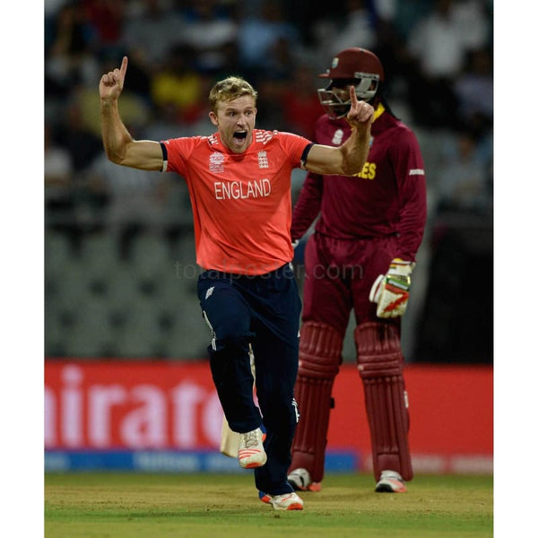 David Willey celebrates dismissing Johnson Charles during the ICC World Twenty20 India 2016 between West Indies and England at Wankhede Stadium | TotalPoster