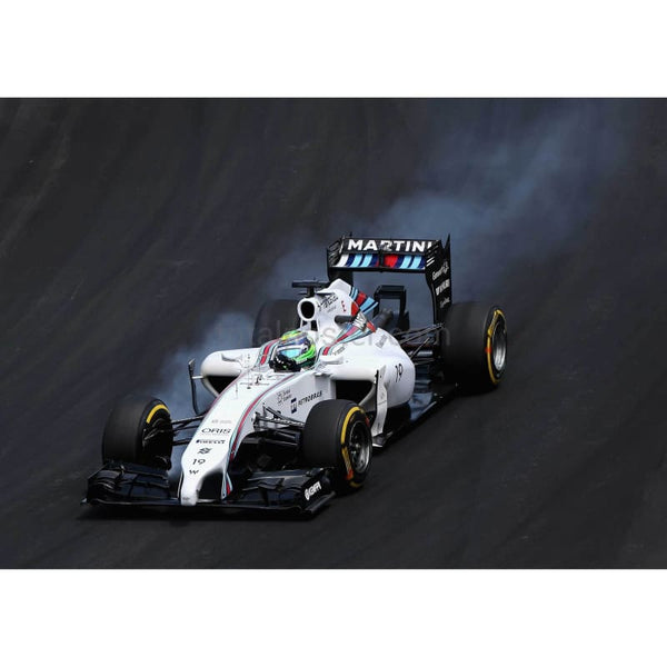 Felipe Massa of Brazil and Williams locks up during the Brazilian Formula One Grand Prix at Autodromo Jose Carlos Pace in Sao Paulo, Brazil | TotalPoster