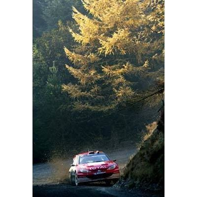 Freddy Loix | World Rally posters | TotalPoster