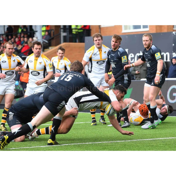 George Smith drives through to score a try during the Aviva Premiership match between Newcastle Falcons and Wasps at Kingston Park | TotalPoster