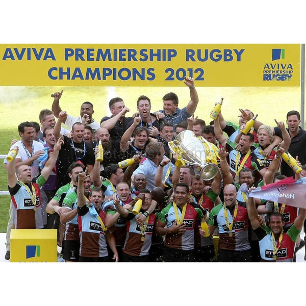 Harlequins  Celebrate Total Poster