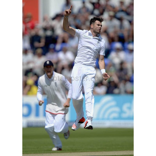 James Anderson celebrates dismissing David Warner during the 1st Investec Ashes Test match between England and Australia at SWALEC Stadium in Cardiff | TotalPoster