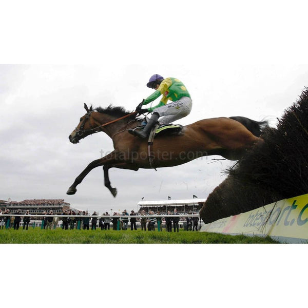 Kauto Star | Horse Racing Posters | TotalPoster