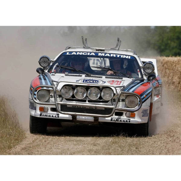 Lancia Delta 037 | World Rally Posters | TotalPoster