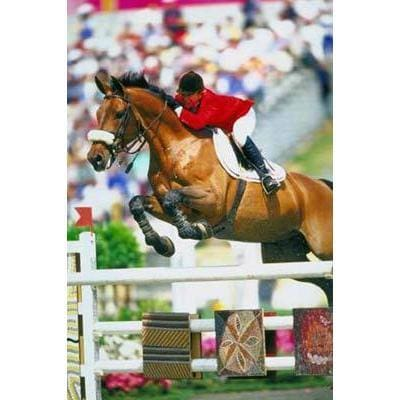 Margie Goldstein poster | Olympic Equestrian | TotalPoster