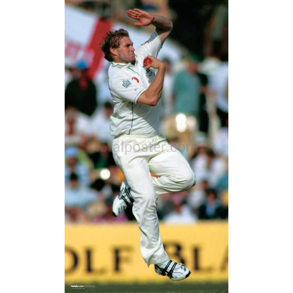 Matthew Hoggard in action during the 2nd Ashes cricket test match between England and Australia at Adelaide | TotalPoster