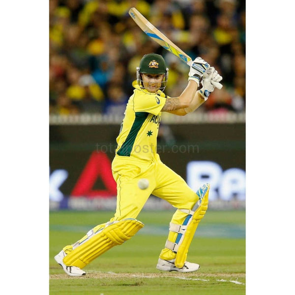 Michael Clarke of Australia bats during the 2015 ICC Cricket World Cup final match between Australia and New Zealand at Melbourne Cricket Ground Australia | TotalPoster