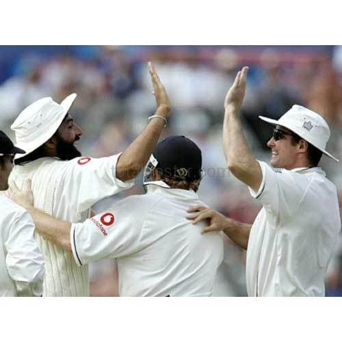Monty Panesar and Andrew Stauss celebrate during the second Npower cricket test match between England and Pakistan | TotalPoster