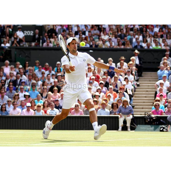Novak Djokovic in action during the Wimbledon Singles final TotalPoster