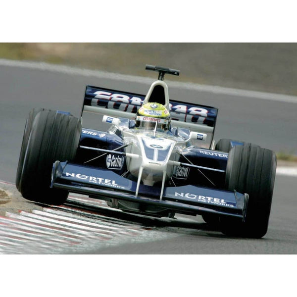 Ralf Schumacher / Williams F1 BMW during practice for the European Grand Prix at the Nurburgring | TotalPoster