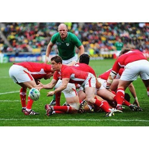 Shane Williams TotalPoster