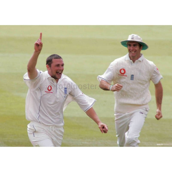 Steve Harmison celebrates taking an Australian wicket during the first day of the Ashes npower First Test | TotalPoster
