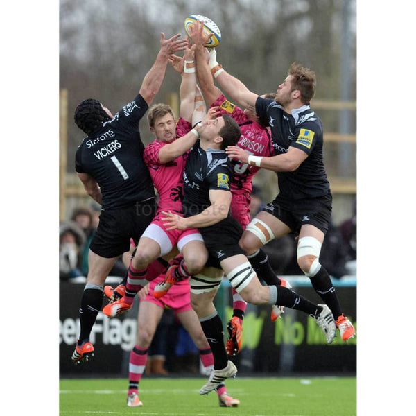 Will Welch of Newcastle Falcons takes the ball during the Aviva Premiership rugby match between Newcastle Falcons and London Welsh at Kingston Park in Newcastle upon Tyne | TotalPoster