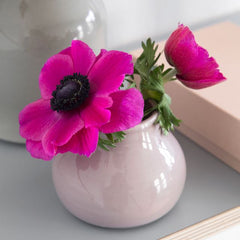 Dusty pink bud case with a bright magenta flower.