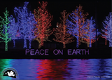 Peace On Earth Holiday Cards [10 pack]