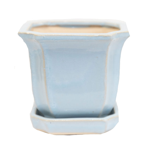 "Blue Bella 8"" Planter"