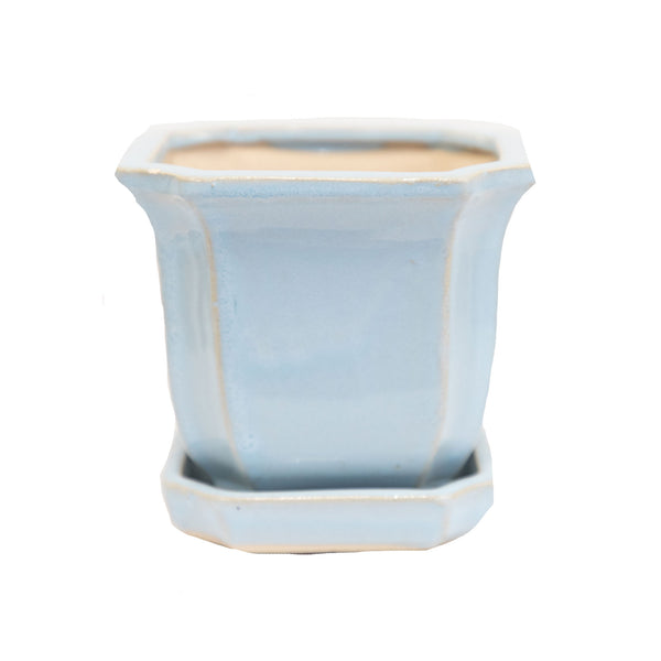"Blue Bella 5"" Planter"