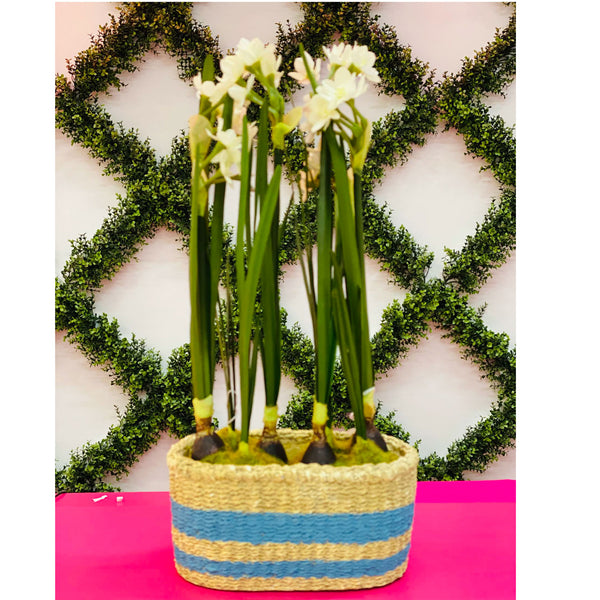 Garden Basket Planter - Blue