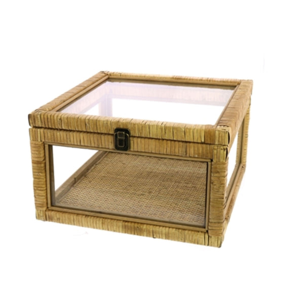 Rattan & Glass Case