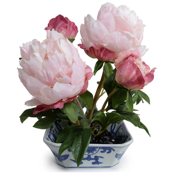 Pink Peony Cutting in Chinoiserie Dish