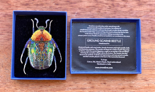 Big Ground Scarab Beetle Brooch