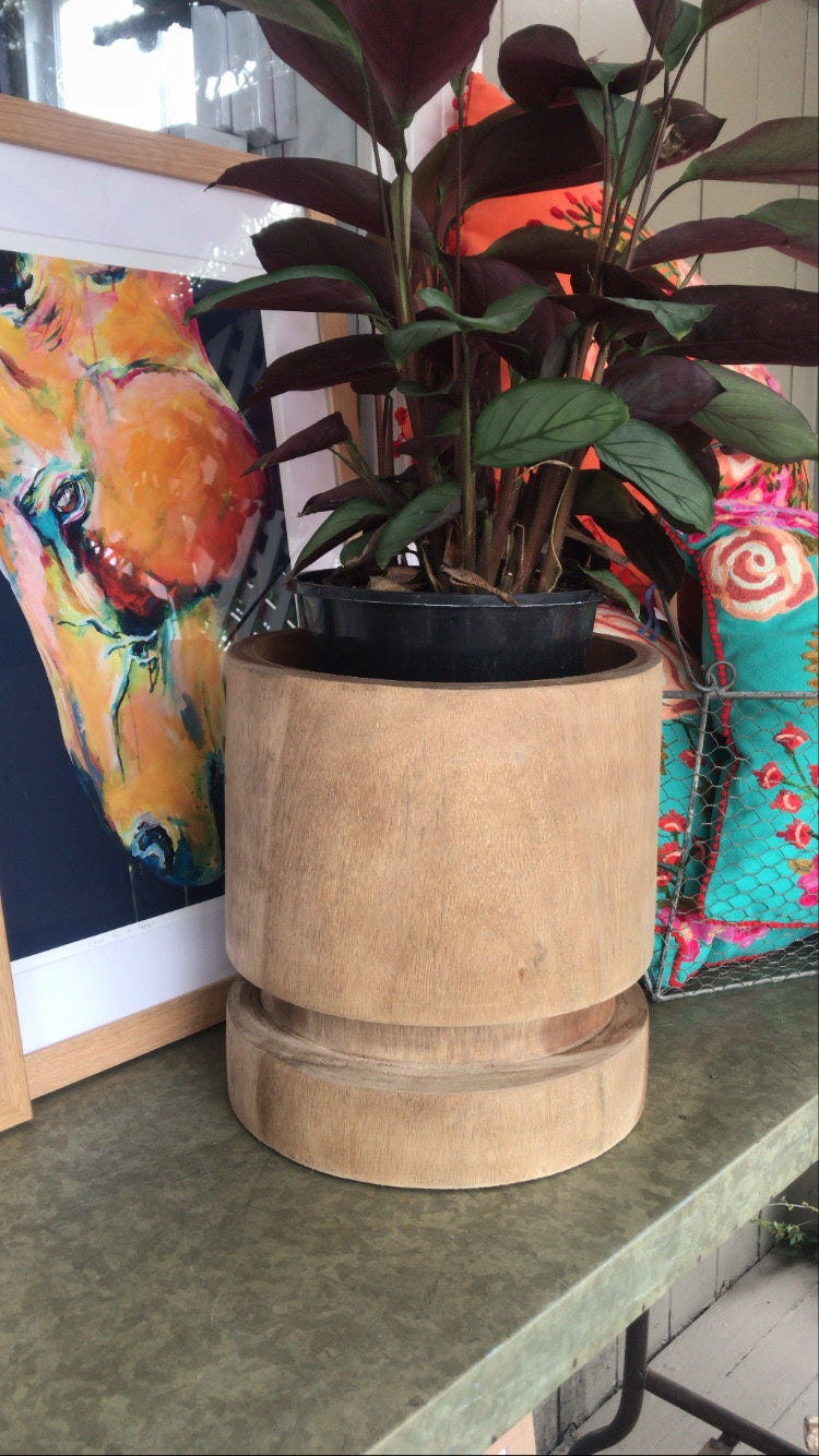 Medium Timber Planter Pot - Natural-Homewares-Not specified-Bristle by Melissa Simmonds