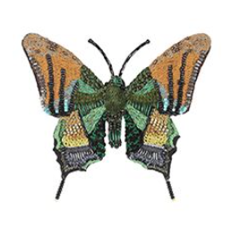 Emperor of India Butterfly Brooch