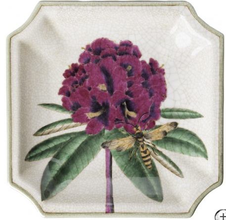 Exotic Wall Plate