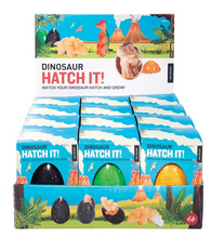 Load image into Gallery viewer, Dinosaur Hatch It