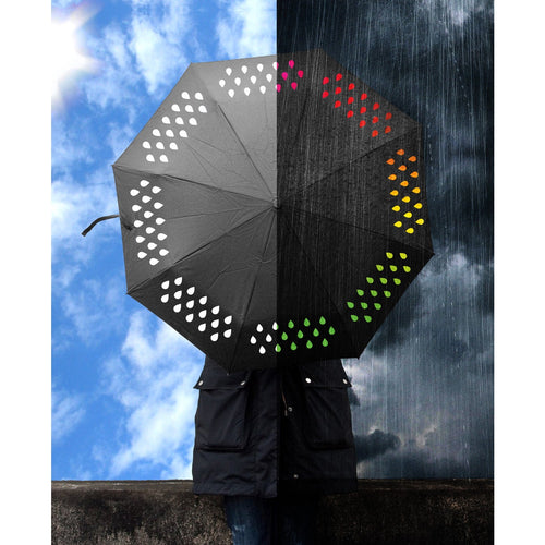 Colour Changing Umbrella-Suck UK-Bristle by Melissa Simmonds
