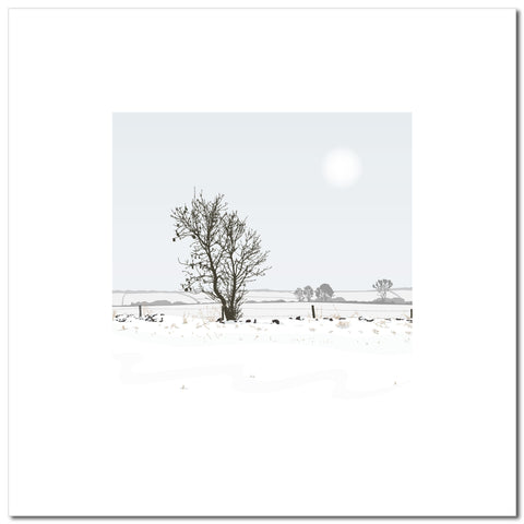 Solo Tree - Blue - Large