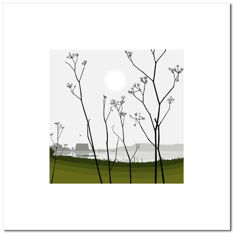 Cow Parsley - Green - Large