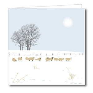Sheep in Field near Bisley Snowy Blank Card