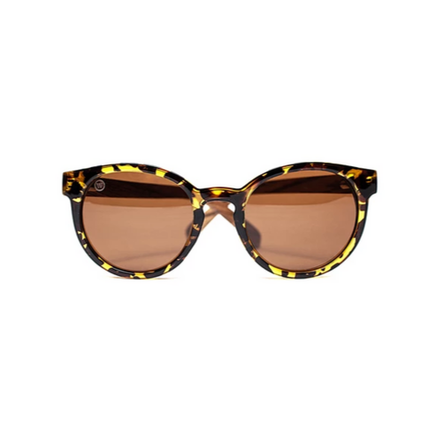 Tortuga by Woodhoy - Eco friendly wooden sunglasses - eco friendly surf shop - zebra wood sunglasses Front on view