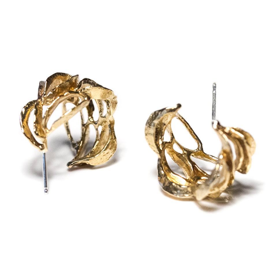 Banksia Hoop Earrings - Yellow Bronze