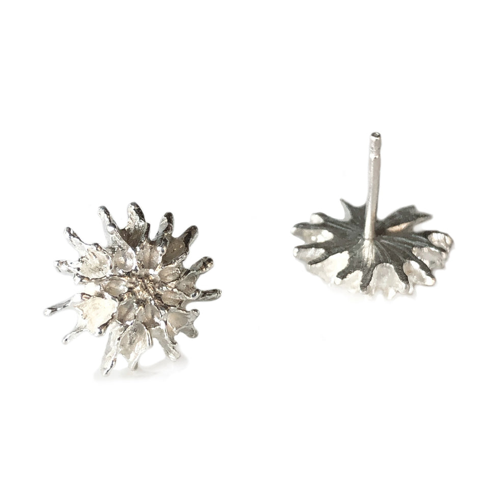 Star Pod Earrings - Silver