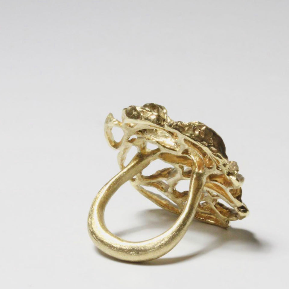 Banksia Medallion Ring - Brass