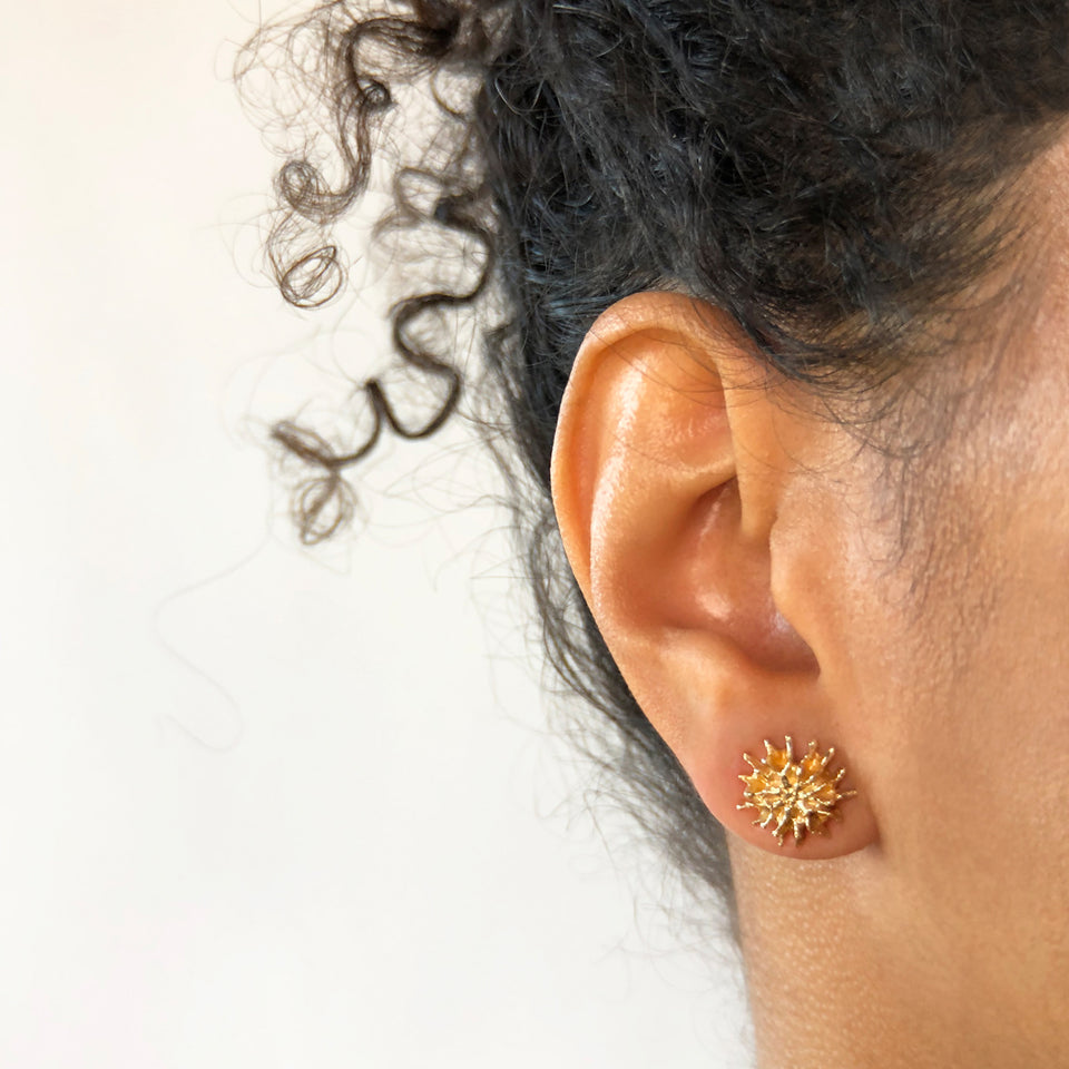 Star Pod Earrings - Yellow Bronze