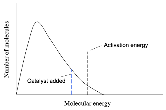 Effect of catalyst on the activation energy of a reaction